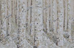 Moonlight Birches