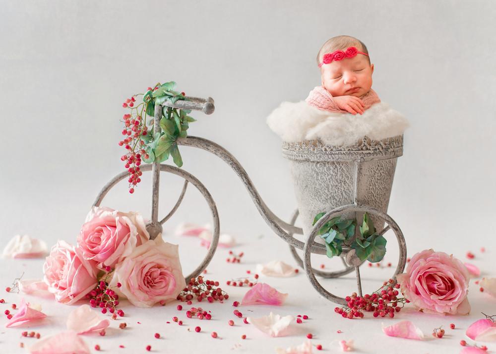 DSC_1003 + bicycle flowers_2.jpg