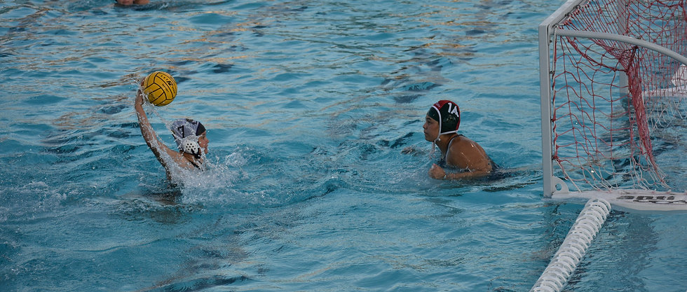 Fresno High,Girls waterpolo,boys waterpolo,Fresno High Waterpolo,Waterpolo,Water polo,Swim,