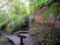 Trap langs oude Fort muur Wolvenberg.jpg