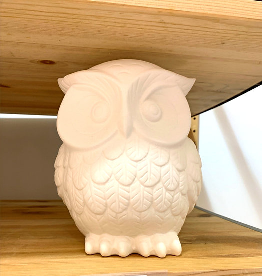 Buddy the Owl
