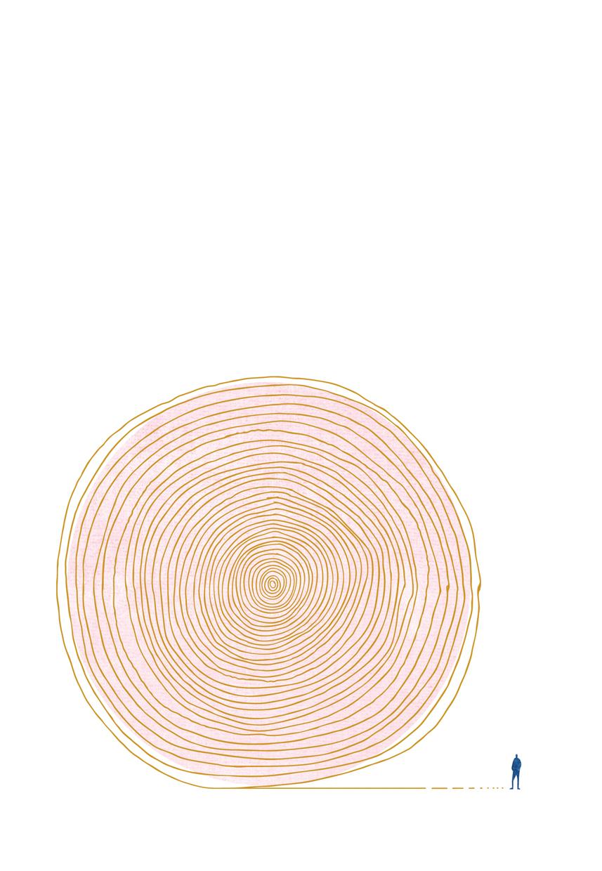 점,선,면단상 사본
