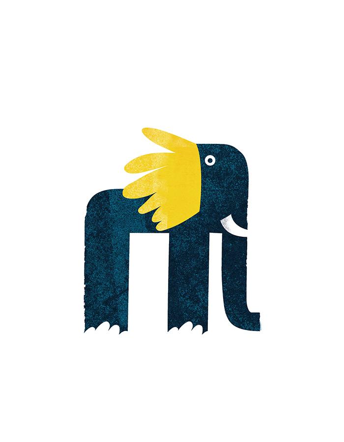 노랑귀 코끼리