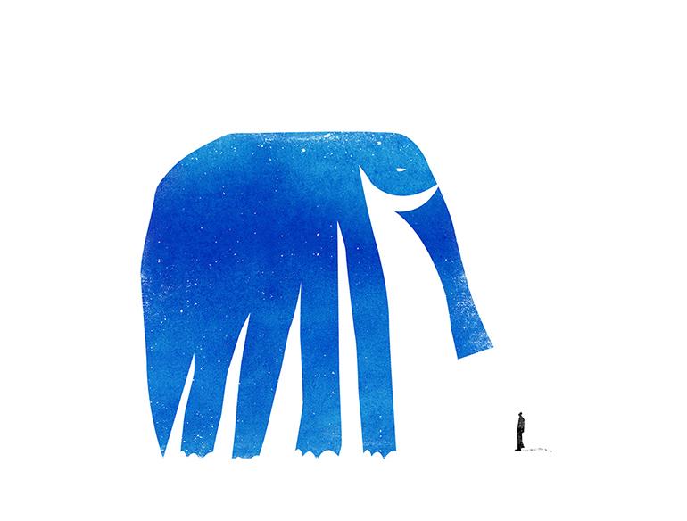 코끼리와 나