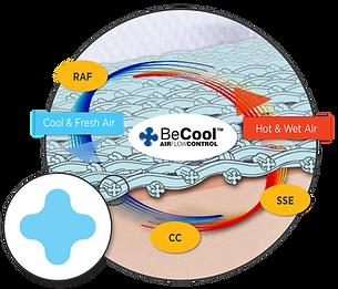 becool-illustration.png