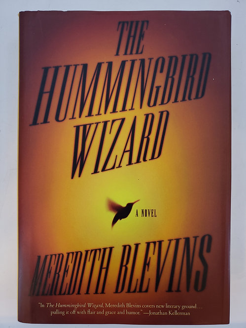The Hummingbird Wizard, a novel by Meredith Blevins