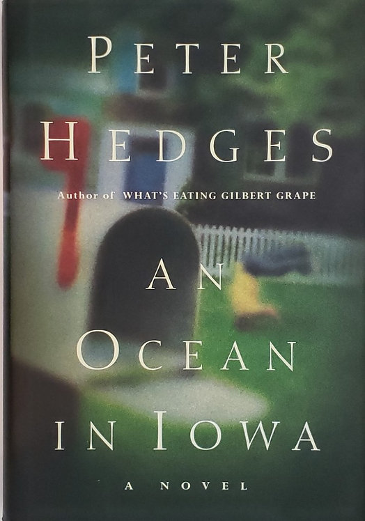 AN OCEAN IN IOWA, a novel by Peter Hedges