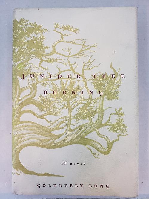 Juniper Tree Burning, a novel by Goldberry Long