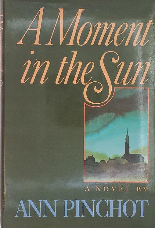A MOMENT IN THE SUN, a novel by Ann Pinchot