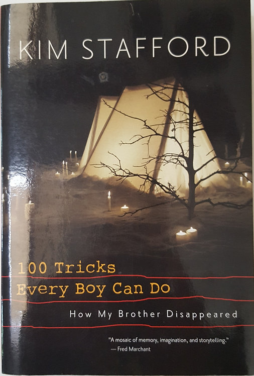100 TRICKS EVERY BOY CAN DO by Kim Stafford