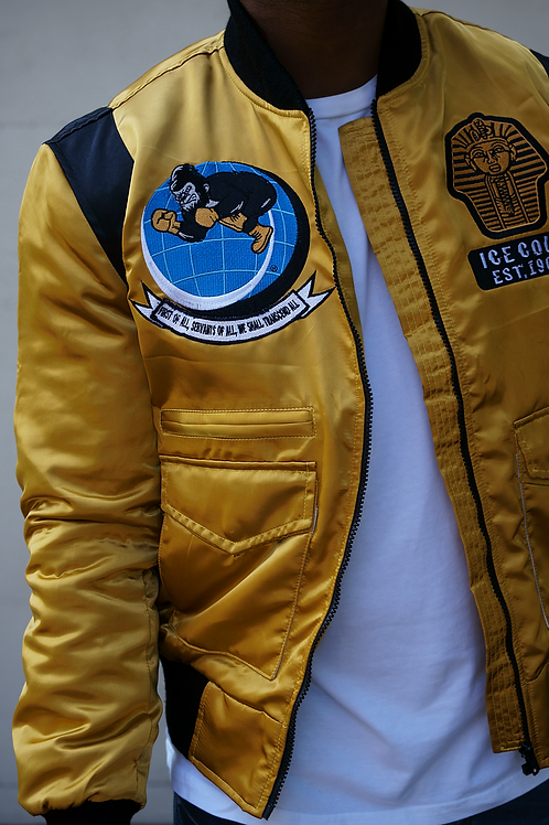 "Ice Cold ""World Take Over"" Flight Jacket"