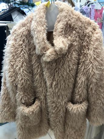 winter coat.2.jpg