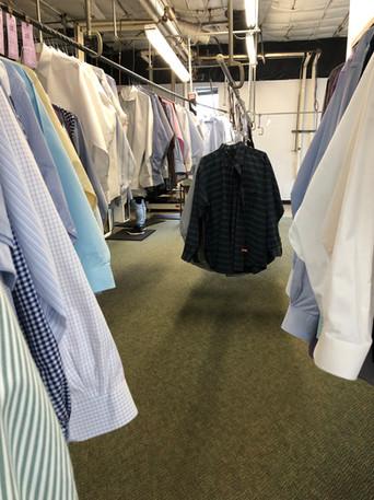 shirt line.jpg