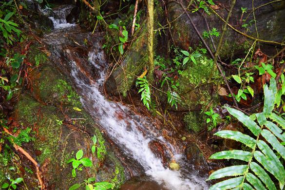 Nacimiento de Agua Mineral