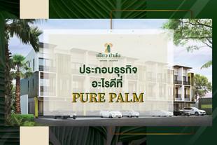 ประกอบธุรกิจอะไรที่ Pure Palm ดี?