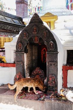 Swayambhunath, Nepal