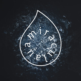 Logo Miraculaua.jpg