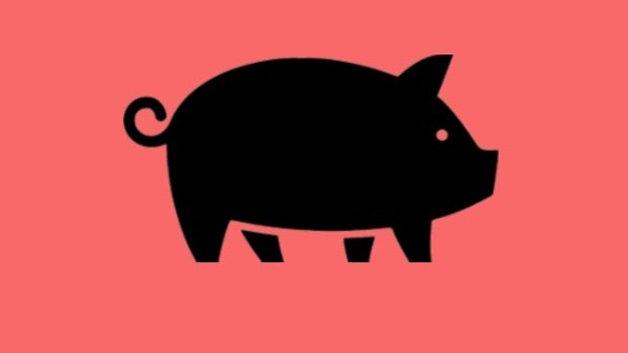 Grain Free -- Pork