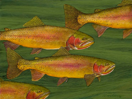 Fall Color Cutthroats.jpg