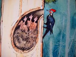 Pileated Woodpecker nest.JPG
