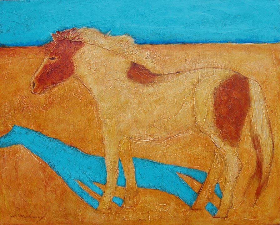 sun pony 120.jpg