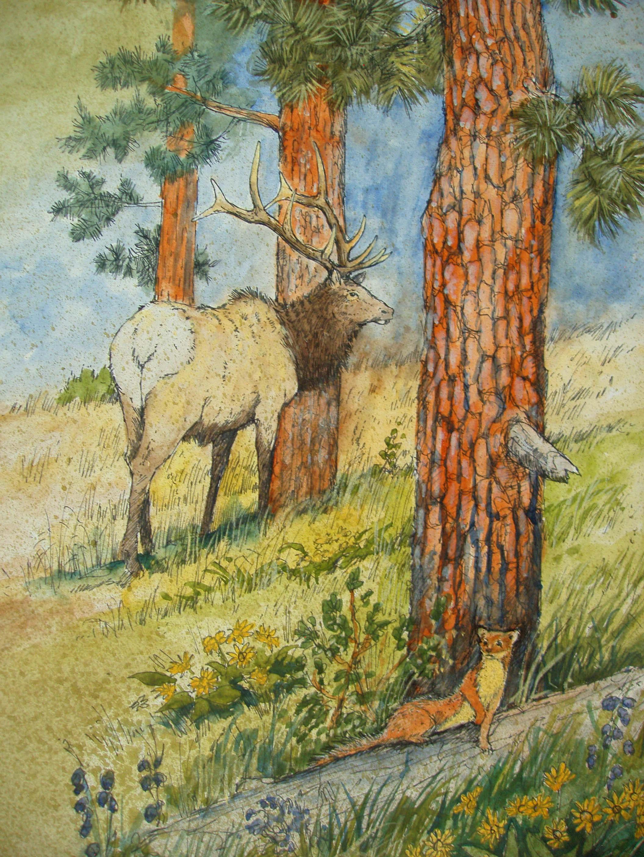 Ponderosa Forest.JPG