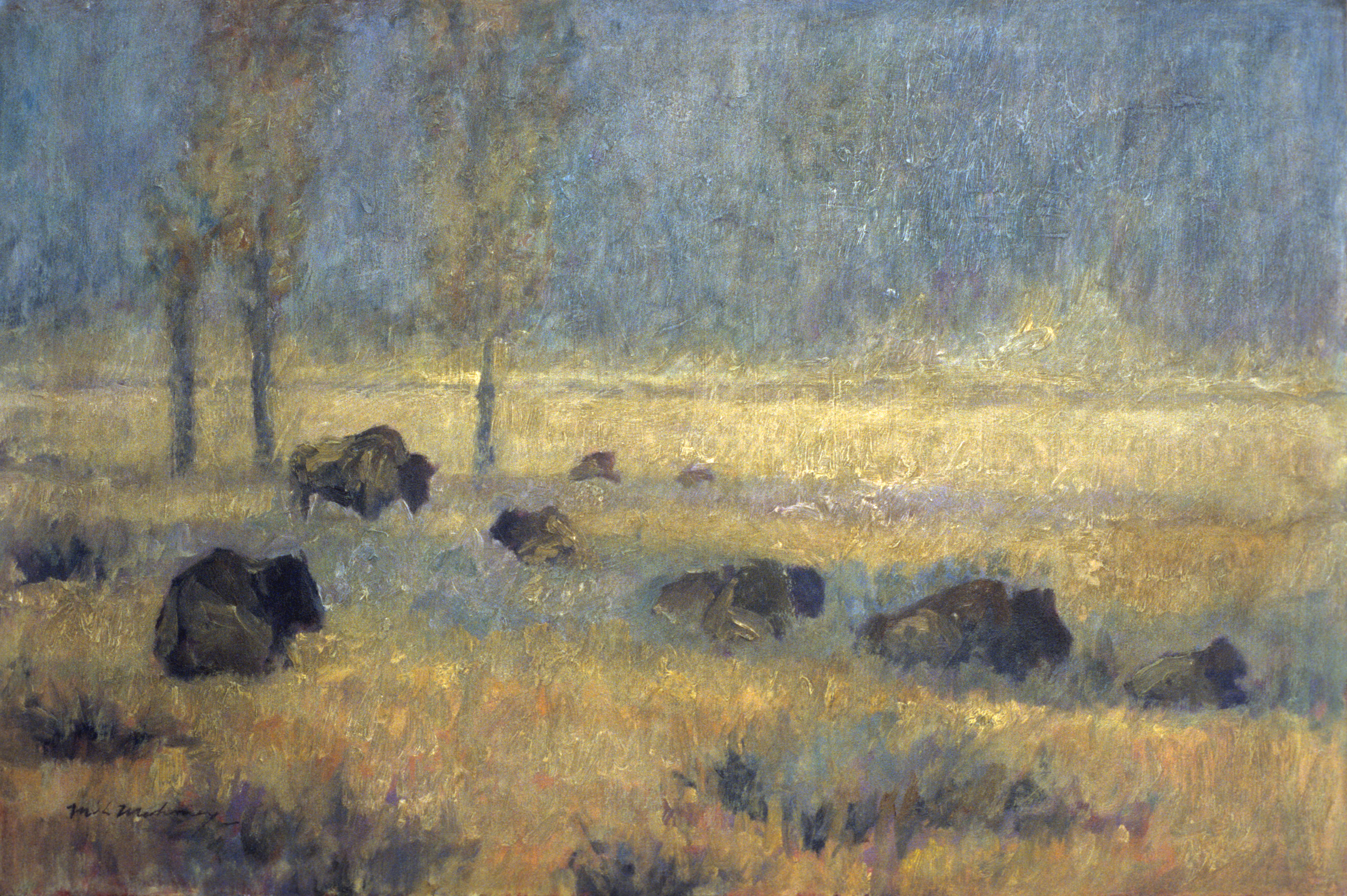 Lamar Bison 24x32 Oil.jpg