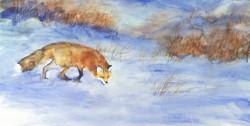 Huntinfg Fox 1989.jpg