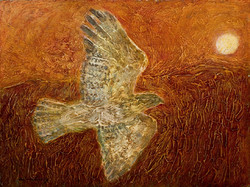 Hawk to the Sun 12x16.jpg