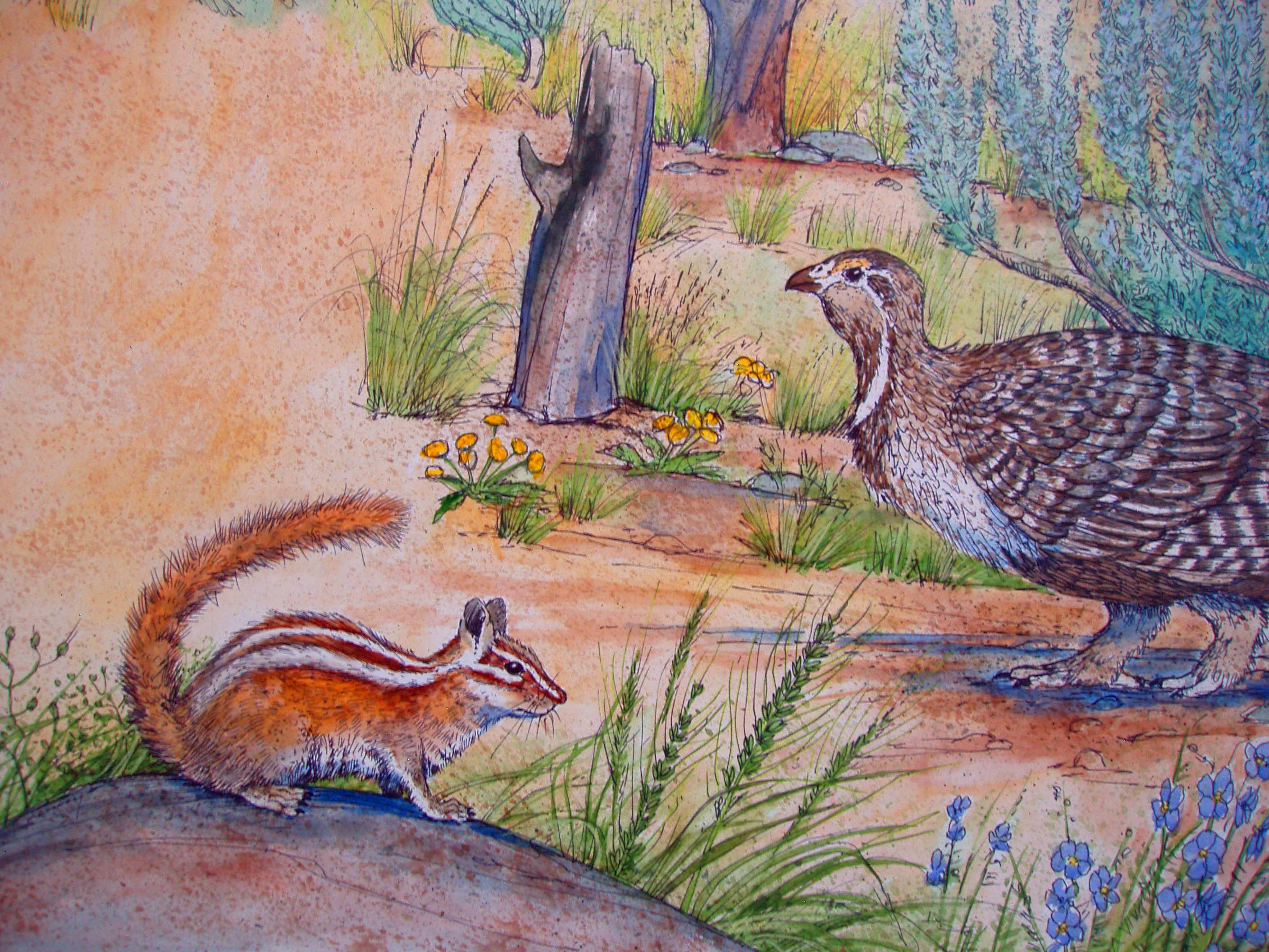 Chipmonk and Grouse.JPG
