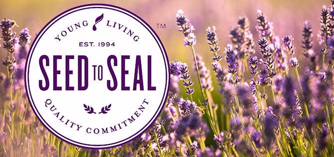 tlc_seed-to-seal_2.jpg