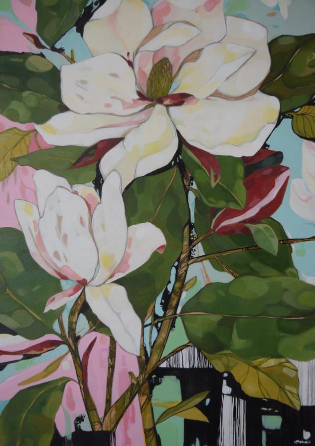 Magnolia Still Life