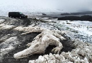 ♛蘇格蘭高地冬季駕駛須知 Winter Driving in Scottish Highland ver.2016♛