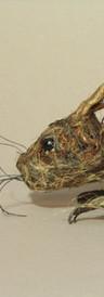 Not So Velveteen Rabbit