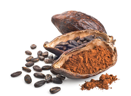 Wonders of raw chocolate