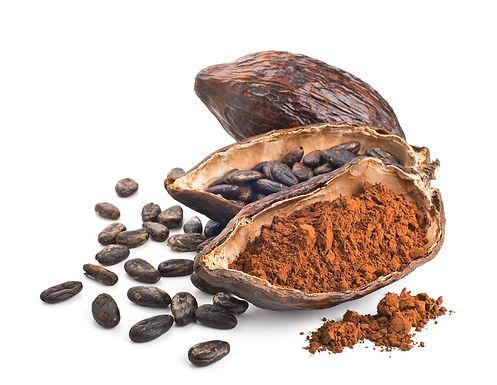 Le Meraviglie del Cioccolato e di un Mondo Raw