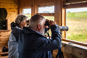 Birdwatching with tonyDuthchas 2018_3.jp