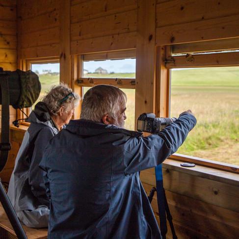 Best Bird Watching Sites on Galson Estate