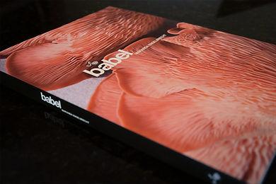 Babylonstoren Babel cookbook