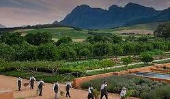 Babylonstoren gardeners walking in with produce