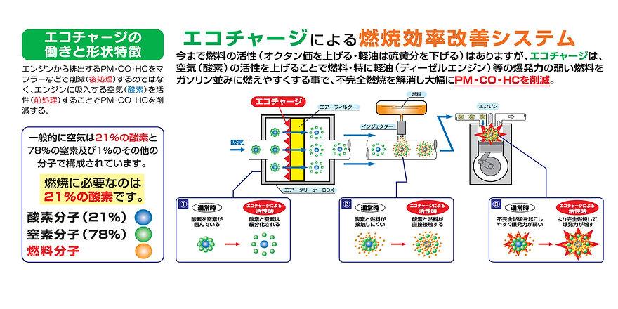 ecotoha2.jpg