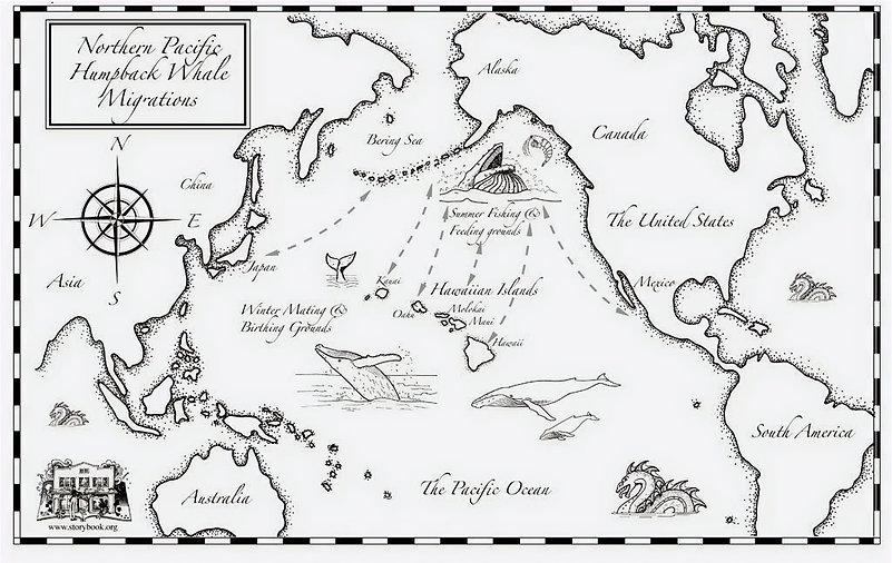 Whale_migration_map_logos-1_edited.jpg