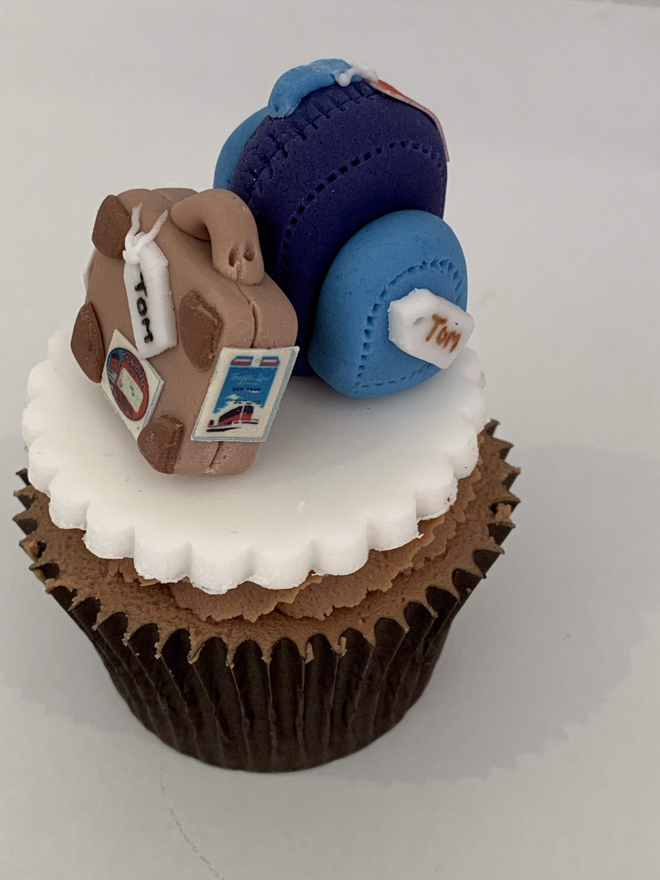 Backpack/case cupcake