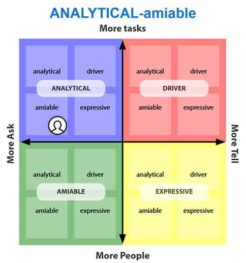 analytical-amiable.png