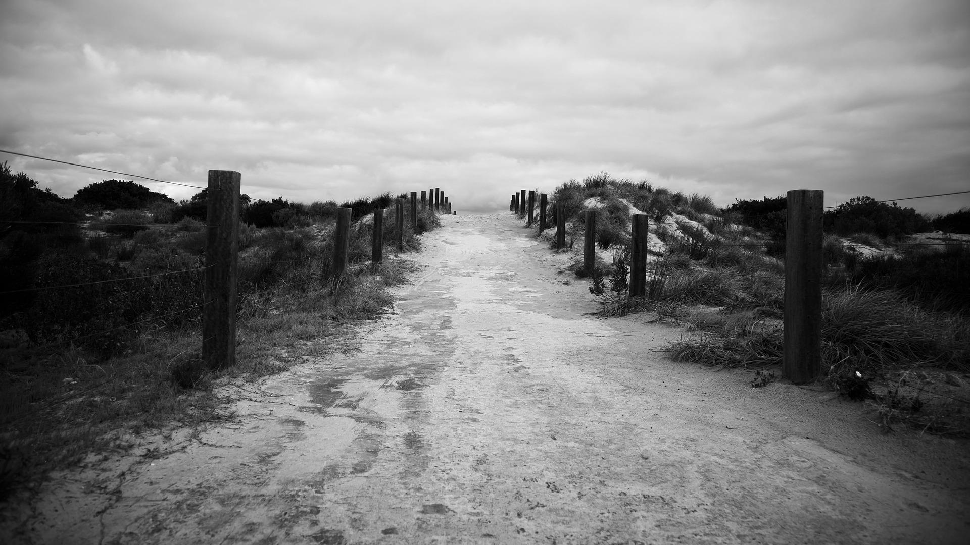 path-841430_1920