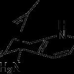 Huperzine - revision ingredient 4