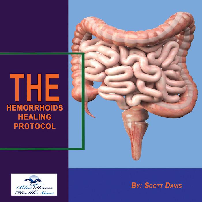 Hemorrhoids Horror Healing Protocol
