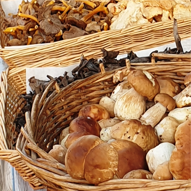 Locally picked mushrooms
