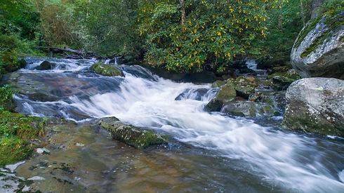 creek.jpeg