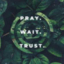 Pray Wait Trust Wet Green Leafs - Title.